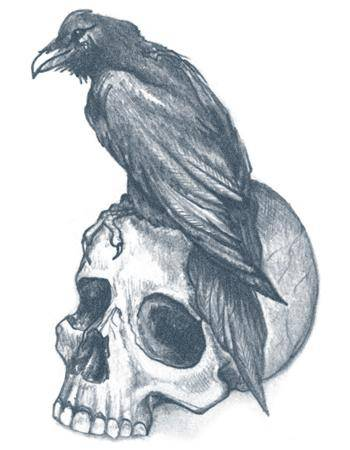 Tattooed Now! Temporary Tattoo - Raven With Skull