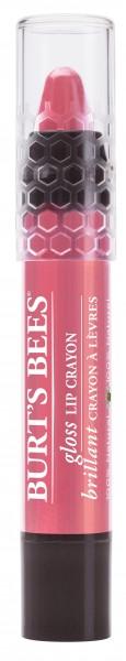 Burt's Bees® Gloss Lip Crayon - Pink Lagoon