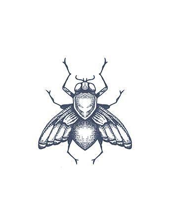 Tattooed Now! Temporary Tattoo - Fly Tattoo
