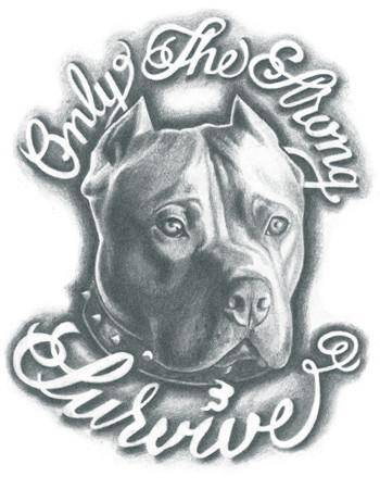 "Tattooed Now! Temporary Tattoo - Pitbull - ""Only The Strong Survive"""